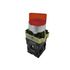 Selettore luminoso con leva a due posizioni fisse - Rosso